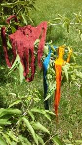 Brazilwood, Indigo, Coreopsis, Natural Dye